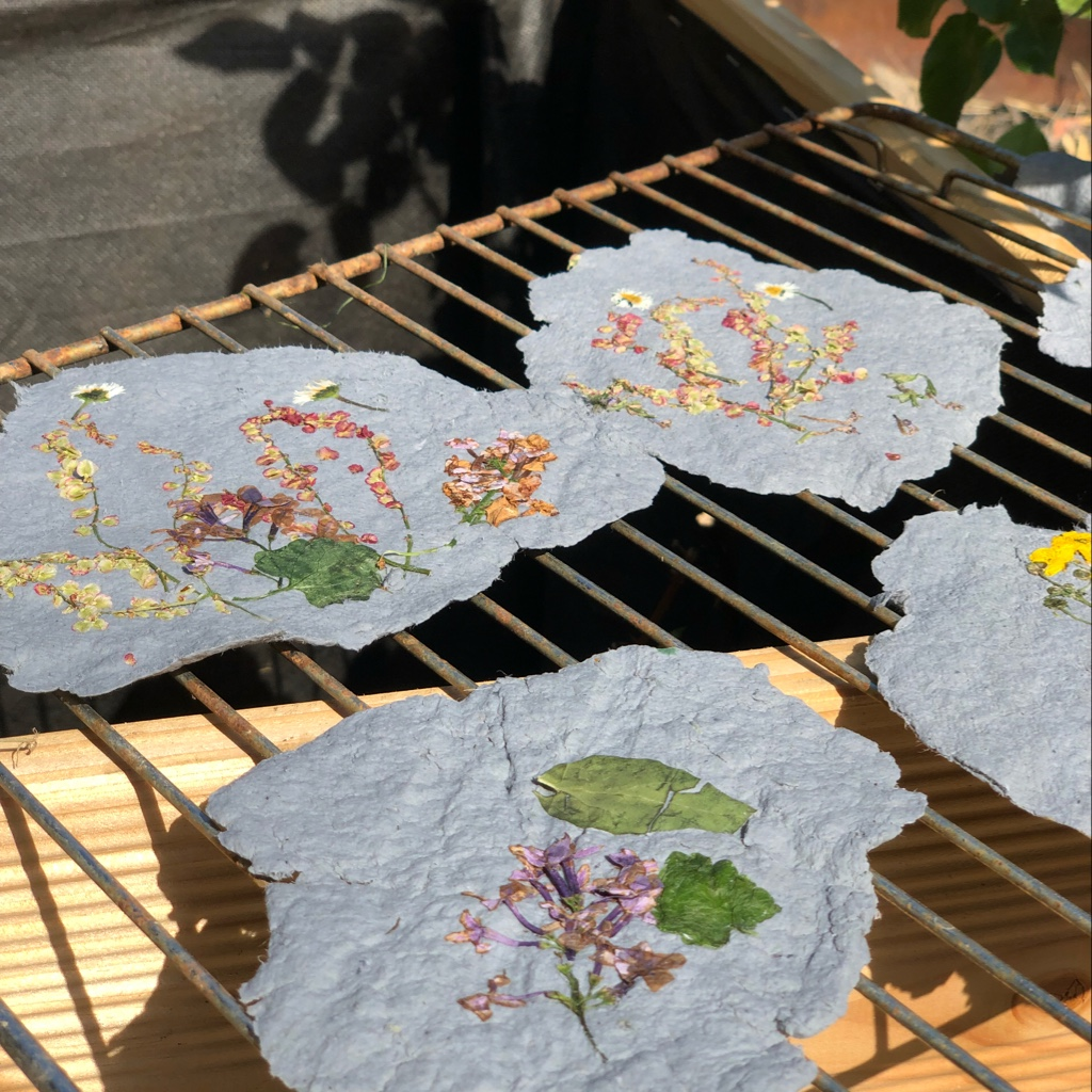mit kindern papier selber herstellen papiersch pfen mit trockenblumendekor geborgen wachsen. Black Bedroom Furniture Sets. Home Design Ideas